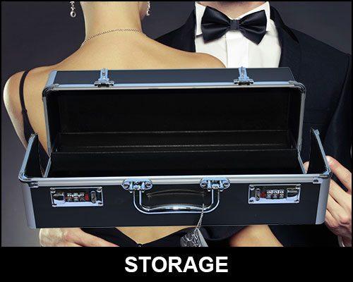 Sex Toy Storage